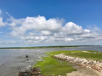 Charleston NPS - 14